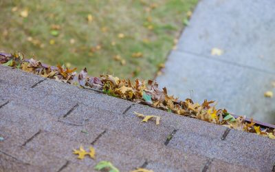 Gutter Cleaning: Is It Necessary?
